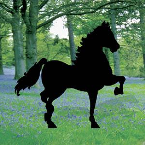 SC1004 - Prancing Horse Pattern