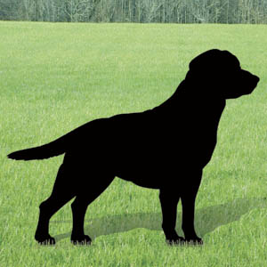938 labrador silhouette pattern for Yard shadow patterns