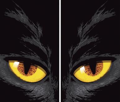 WP654 Cat Eyes Window Poster