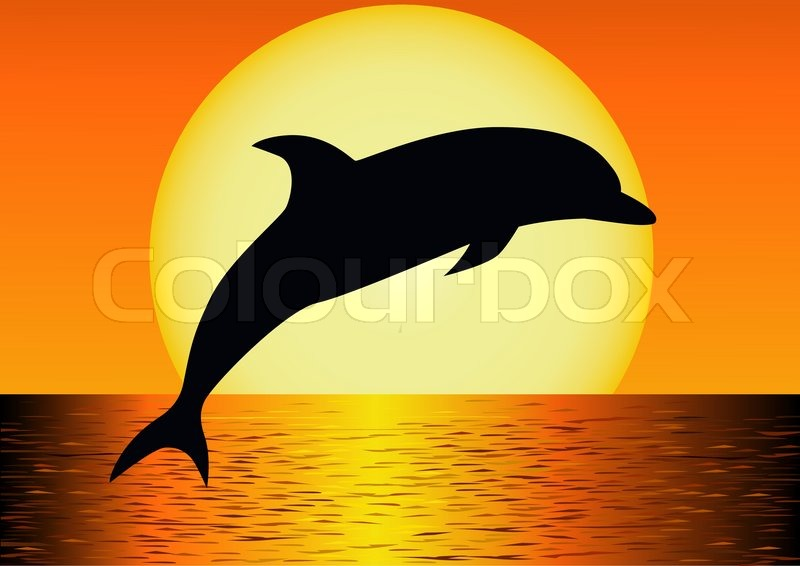 DT-300 Dolphin Shadow Pattern