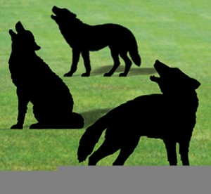 SH-67 - Life-Size Wolf Shadows Pattern