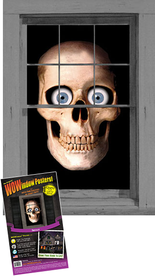 WP1020 Skully Window |poster